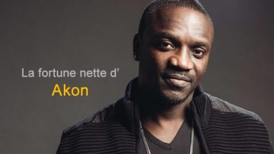 Photo de Quelle est la fortune d'Akon?
