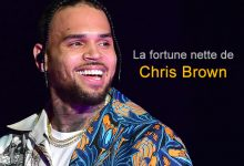 Photo of La fortune de Chris Brown