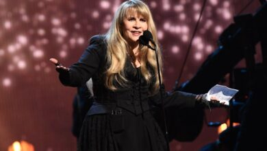 Photo de Stevie Nicks Valeur nette | Richesse des célébrités